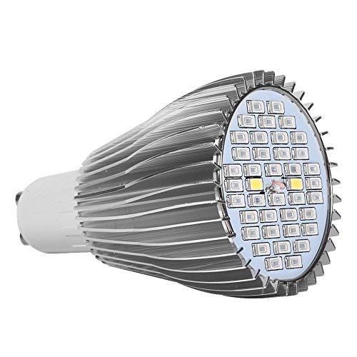 LED Pflanzenlampe Pflanzenleuchte Pflanzen Lampen Grow Wachsen Lichter Pflanzenlicht Leuchtmittel Licht für Gewächshaus Blumen Gemüse Garten Balkon 30W, 40LEDs, IP54 für Garten