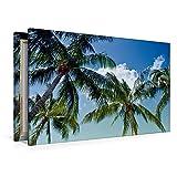 Premium Textil-Leinwand 120 cm x 80 cm quer Urlaubsstimmung | Wandbild, Bild auf Keilrahmen, Fertigbild auf echter Leinwand, Leinwanddruck: Traumhafte Palmen (CALVENDO Orte)