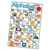 Unbekannt MagiDeal Englisch Basiswortschatz Karteikarten Poster Set für Kinder - Alphabet