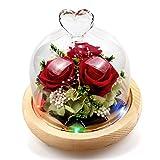 StillCool Ewige Rose, Konservierte Rose handgemachte frische Blume Rose mit schönen kreativen Herzen Design EIN Geschenk für Valentinstag Muttertag Weihnachten Jubiläum Geburtstag Thanksgiving