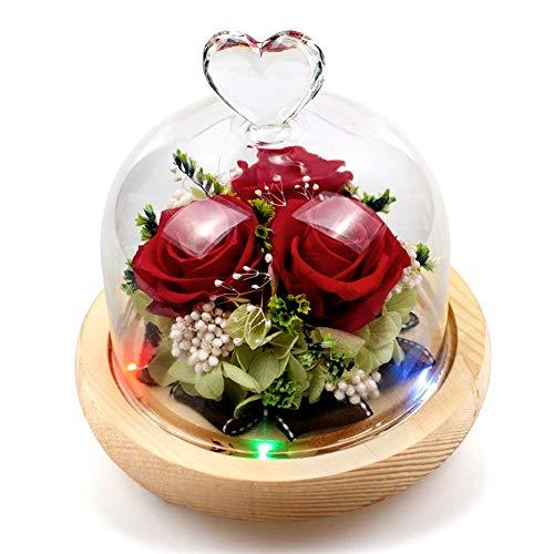 Swonuk Rosa eterna con 8 Colores de luz LED Flor Conservada Rosa con Pétalos Caídos Rosa Encantada para el Aniversario de Boda de San Valentín