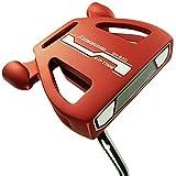 Ray Cook Golf plata SR500del