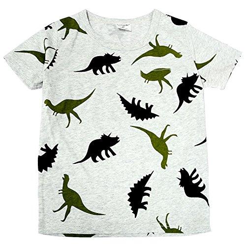 BINIDUCKLING Muchachos de los muchachos del niño ' 100% Algodón Gris Dinosaurio-estampado manga corta camiseta cuello redondo, disponible 1-6 años (4-5 Años, Gris)