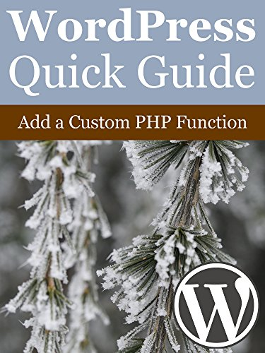 WordPress Quick Guide: Add a Custom PHP Function (English Edition)