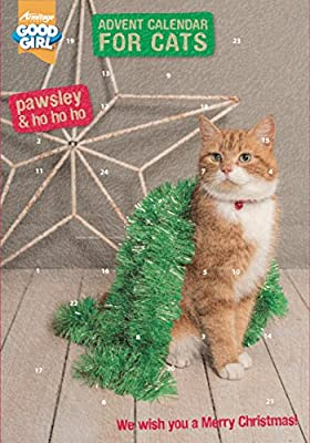 Pawsley Cat Advent Calendar