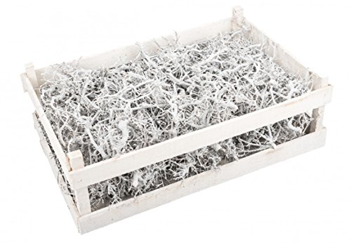 NaDeco Bonsai Äste weiß mit Holzkiste | Dekozweige | Dekoäste | Weiße Zweige | Kleine knorrige Zweige | Weiße Äste