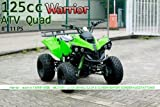 WARRIOR 2012 Edition Quad ATV 125 ccm 1-Zylinder