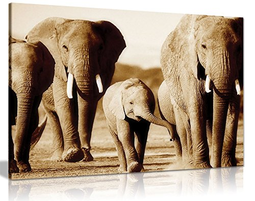 Elefantes Marrón Sepia lienzo pared Art imagen impresión, Brown/Sepia, A4 31x20cm (12x8in)