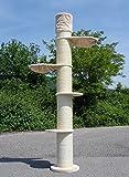 Stabiler Kratzbaum für große Katzen - deckenhoch - höhenverstellbar für Deckenhöhe 235 - 244cm - besonders dicke Sisalstämme 22cm Ø