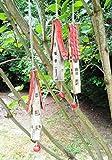 3 Keramik Windspiel Klangstäbe rot beige Gartendeko Baumdeko Frühlingsdeko Osterdeko