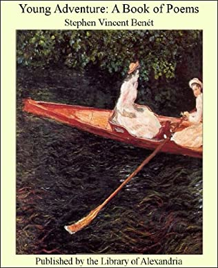 book cover of Young Adventure