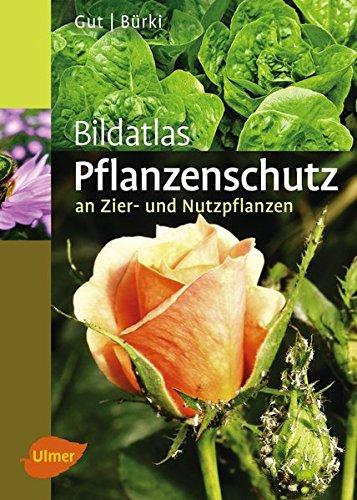Bildatlas Pflanzenschutz an Zier- und Nutzpflanzen: Krankheiten und Schädlinge erkennen, vorbeugen und richtig behandeln (Bildatlanten)