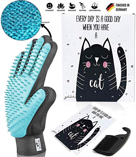 Le gant de toilettage pour chat