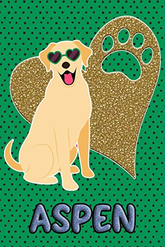 Aspen Labs (Lab Life Aspen: College Ruled | Composition Book | Diary | Lined Journal | Blue)