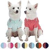 Blueberry Pet Doppelpackung Basisstücke Baumwoll-Mischgewebe Hunde-Poloshirts in Mintblau und Terra Cotta Rot, Rückenlänge 36cm