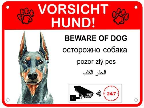 LUGUNO Hundeschilder Warnung Alu 20x15 cm 5-sprachig Vorsicht Hund (20x15cm - Dobermann)