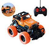 MARKKEER Remote Control Car, Buggy RC Car 2.4Ghz 4WD High Speed All Direction