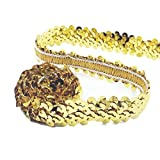 Yalulu 10 Yards Glänzendes Paillettenband Glitzer Pailletten Bänder Borten für DIY Handwerk Basteln (Gold)