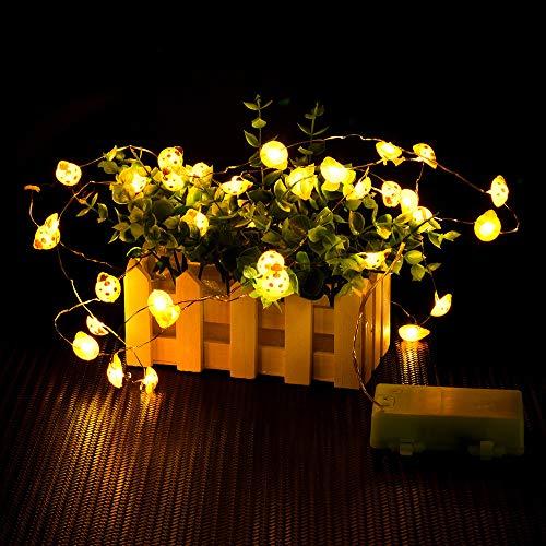99native Weihnachten Nette Marienkäfer feenhafte Schnur 40 LED 10ft Kupferdraht mit Direktübertragung für Dekorationen nnen/außen Gartenleuchte,Festen,Karneval und Disco (Orange)