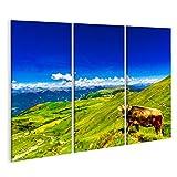 bilderfelix® Blick auf die Kuh auf der grünen Wiese in