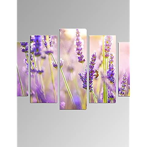 ZSQ 5 Pannello Foto di lavanda Stampa su tela Flower Wall Art per Living Room decor pronto ad appendere #2139