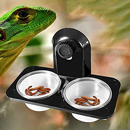 Double Grid Reptiles Food Water Feeding Bowl Insects Spider Breeding Tank Pots Suction Cup Gecko Feeder with 2 Bowls for… 2