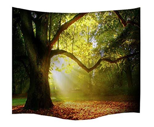 izielad Baum Sonnenlicht Wandteppich Land Dekor Morgensonne Rays Summertime Landschaft Wald Woodland Scenic View Schlafzimmer Wohnzimmer Wohnheim Wandbehang 229x153cm 90