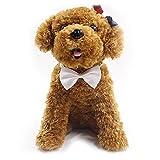 Pajarita de Perro, Legendog 10pcs Pajarita de Animales de Compañía coloreado perro de gato arco Lazos Mascotas Suministros para el Banquete de Boda