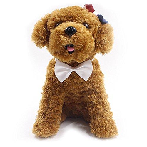 Hund-Bindung, Legendog 10Pcs Haustier-Querbinder-sortierte farbige Katze-Hundes-Bogen-Krawatten Haustier-Versorgungsmaterialien für Hochzeits-Party