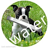 Handy Ring Halter Handyhalterung Telefon/Ständer/Handyhalter Handy Finger Ring Halterung Auto Halterung Ständer für iPhone Smartphone Phone Ring Holder Boston Terrier Hund 1W1159