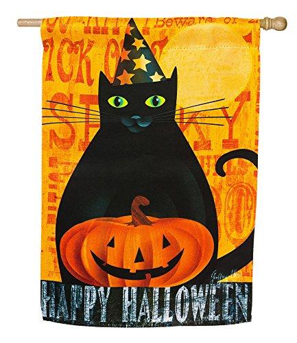 Ghost House Flag (Wildleder Halloween Night Ghost und schwarz Katze Zwei-seitige House Flagge)