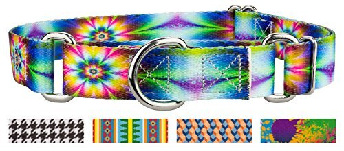Country Brook Design Hundehalsband Martingale-Blumen, Gr. L (Groovy Party Supplies)