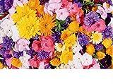 Puzzle 1000 Piezas Flor Decorativa Cruz Adulto Rompecabezas Diy Kit De Juguete De Madera Regalo Único Decoración Para El Hogar