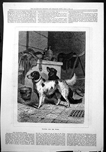 la-impresion-antigua-de-los-perros-de-caza-de-la-palabra-que-esperan-alista-el-cepillo-1877-del-cubo