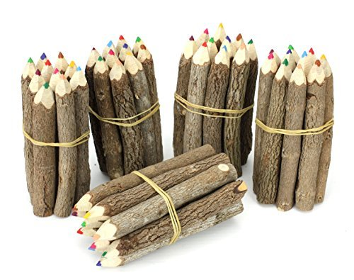 Thai Tree Branch Twig Pencil Bundle - Extra Small Size - Multicolour - MultiBundles by Farang