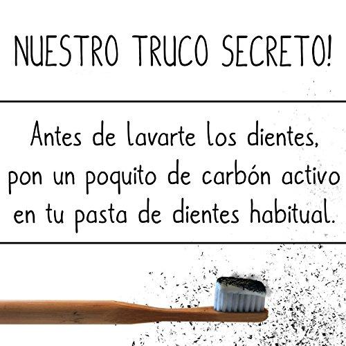Carbón Activado Premium – Polvo 100 % orgánico – Sin aditivos ...
