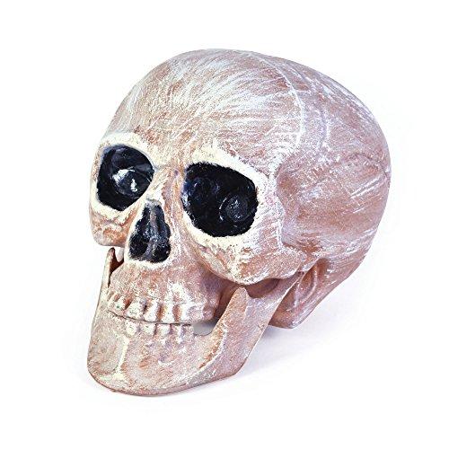 Bristol Novelty HI266 - Cabeza de cráneo, color rosa y blanco, talla única