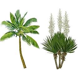 Frostharter Mix 6 Arten 60 Palmen Yucca Samen