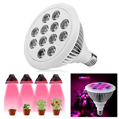 Led Pflanzenlampe, Aerb E27 12W Efficient hydroponischen Pflanze wachsen Licht wachsen Lampe für Zimmerpflanzen Blume Gemüse