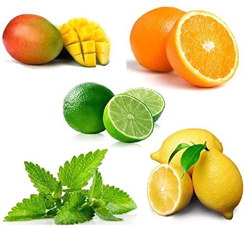 crazygadgetr-e-shisha-flavour-refill-liquid-juice-10ml-x-5-mango-lemon-lime-orange-mint