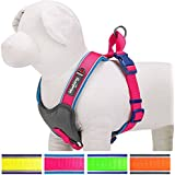 Blueberry Pet Summer Hope 3M Reflective 2cm Wide* 45cm Neck* 47-53cm Chest Fluorescent Pink Padded Dog Harness Vest, Ultra-soft No Pull, Matching Collar Available Separately