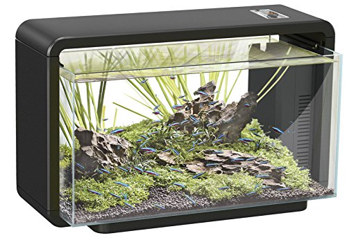 SF LED Aquarienset Home 25 schwarz - 2