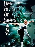 Martial Arts of Shaolin [OV]