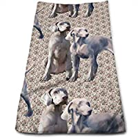 ewtretr Toallas De Mano, Dog Weimaraners Cool Towel Beach Towel Instant Cool Ice Towel Gym