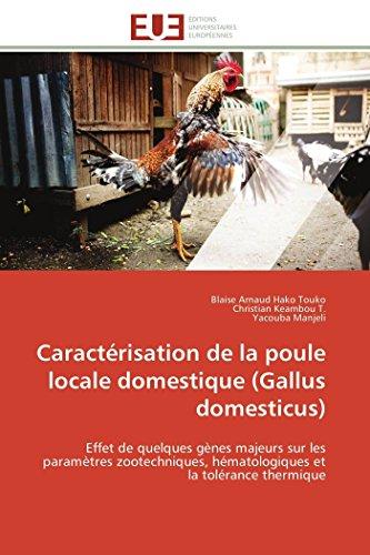 Caractérisation de la poule locale domestique (gallus domesticus)