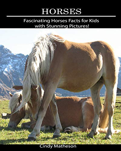 Horses: Fascinating Horses Facts for Kids with Stunning Pictures! (For Facts Kids Horse)