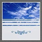 668 / 80cm hoch Sichtschutz Folie Fenster Sichtschutzfolie Fensterfolie Glasdekor Sichtschutzfolie Window blickdicht wasserfest selbstklebende Folie
