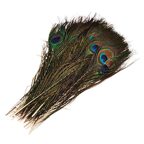 GODNECE 30cm 50 STK.Pfau Deko Federn Pfauenfedern Echt Pfauenfedern Natur Peacock Feathers für Karneval/Rosen Montag/Halloween