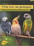 vivre avec un perroquet amazones gris du gabon youyou grandes perruches