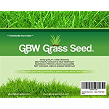 fast growing grass seed co uk fast growing grass seed 28825